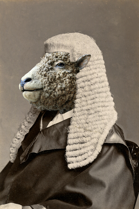 His Honour, Lord Justice Sheep